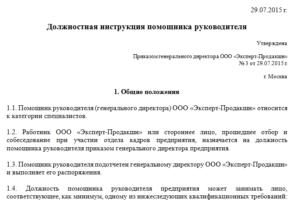 Должностная инструкция финансового директора образец бланк