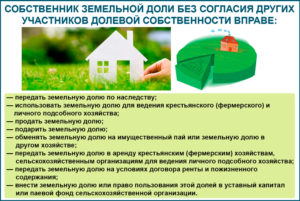 Как продать долю земельного участка