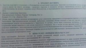 Договор оказания ветеринарных услуг
