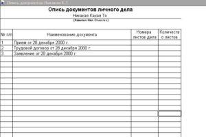 Опись передаваемых документов образец бланк