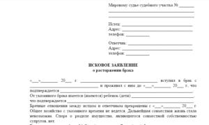 Заявление в мировой суд о расторжении брака образец бланк