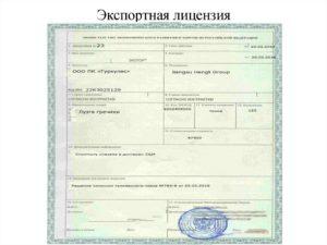 Исключительная лицензия образец бланк