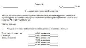 Приказ о создании постоянно действующей комиссии образец бланк