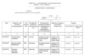Программа проведения вводного инструктажа по охране труда образец бланк