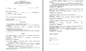 Протокол собрания учредителей, образец