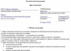 Должностная инструкция директора образец бланк
