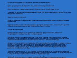 Жалоба в Европейский суд по правам человека образец бланк