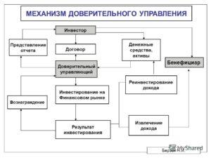 Доверительное управление ООО
