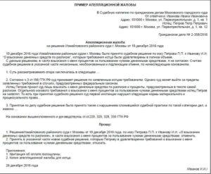 Краткая апелляционная жалоба образец, пример, бланк