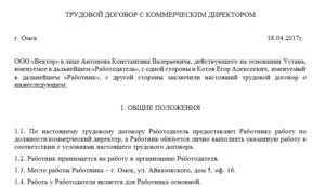 Трудовой договор с заместителем генерального директора ооо образец бланк