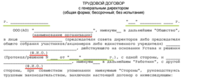 Трудовой договор коммерческого директора образец бланк
