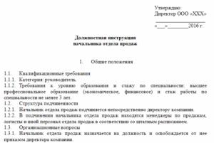 Должностная инструкция руководителя проекта образец бланк