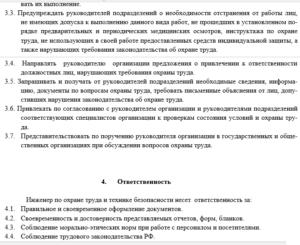 Должностная инструкция руководителя службы охраны труда образец бланк