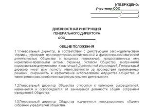 Должностная инструкция зам директора по производству образец бланк