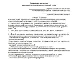 Должностная инструкция начальника отдела закупок образец бланк