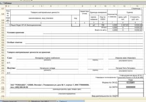 Акт МХ-3 приема передачи ответственного хранения товара образец бланк