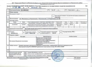 Выписка из технического паспорта образец бланк