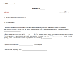 Приказ на право подписи первичных документов образец бланк