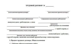 Трудовой договор с надомником образец бланк