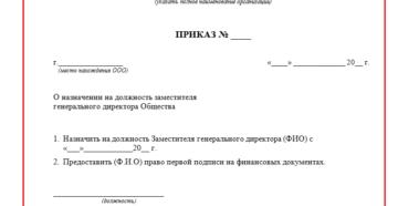 Назначение генерального директора ООО образец