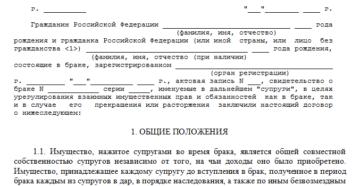 Проект брачного договора
